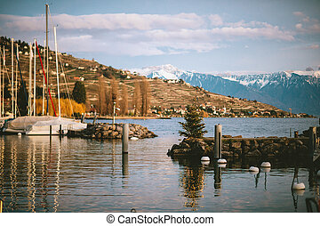 Winter landscape with Christmas tree in a small port on lake Geneva