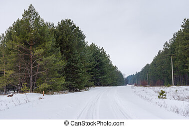 Winter landscape with country road in coniferous forest