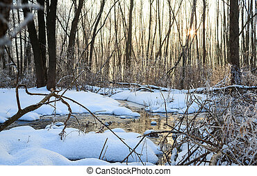 Winter landscape with creek in forest - Winter landscape...