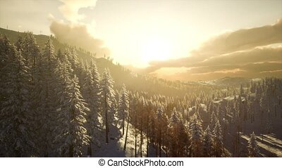 Winter Landscape with Foggy Mountain Sunset - amazing winter...