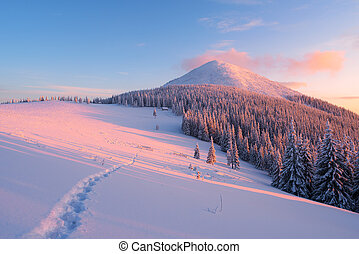Winter landscape with footpath in the snow in the mountains...