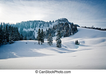 Winter landscape with forest in the austrian alps