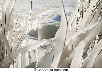 winter landscape with ice