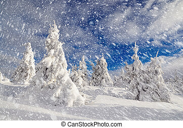 Winter landscape with mountain forest
