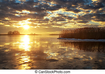Winter landscape with river, reeds and sunset sky. Beautiful winter landscape. Composition of nature.