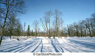 Winter landscape with shades