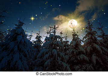 Winter landscape with snow covered fir trees and full moon.