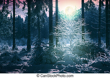 Winter landscape with snow covered trees and full moon.