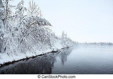 Winter landscape with snow-covered trees on lake shore