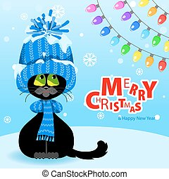 Black cat in a blue hat and scarf looks at the multi-colored bulbs.