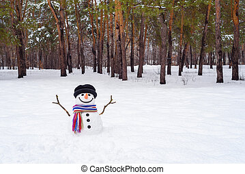 Winter landscape with snowman in park