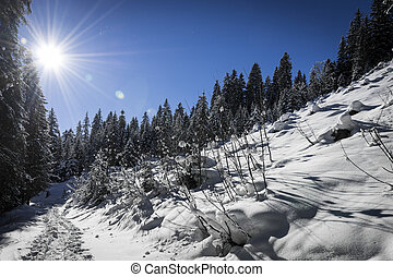 winter landscape with steps in the snow and sun at blue sky