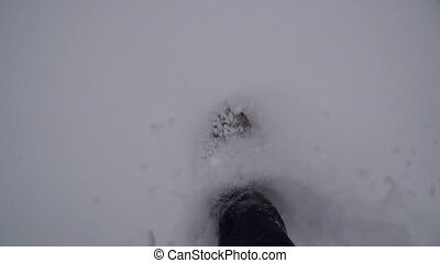 Winter. Legs are walking in the snow