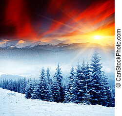 Winter - Majestic sunset in the winter mountains landscape....