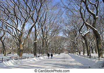 Winter Mall, Central Park