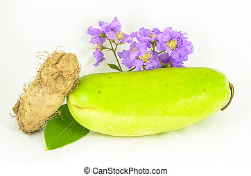winter melon with purple flowers and roots