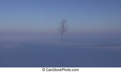winter morning landscape with fog