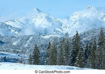 Winter mountain landscape (Austria, Tirol)