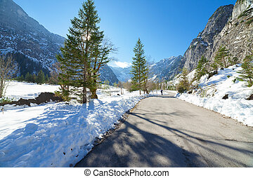 Winter mountain landscape on a sunny day with fir trees. Winter road in the forest.