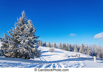 Winter mountain landscape with lots of snow trees