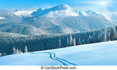 Morning winter calm mountain landscape with ski track and sunshine (Goverla view - the highest mount in Ukrainian Carpathian). Four shots stitch image, 16 to 9 wide propotions.