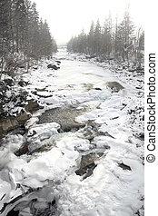 Winter mountain river.