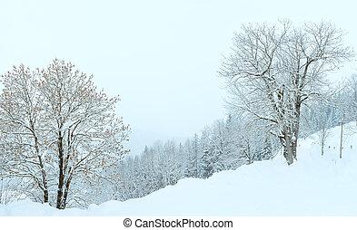 Winter mountain snowfall landscape - Winter mountain foggy ...