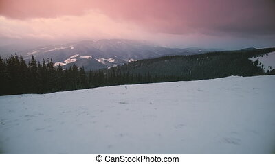 winter mountain snowy forest lanscape aerial view