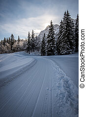 winter mountain track landscape