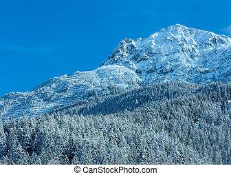 Winter mountain(Austria, Tirol)