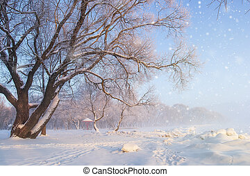 Winter nature landscape. Frosty tree on snowy meadow. Snowflakes falling. Snowfall.