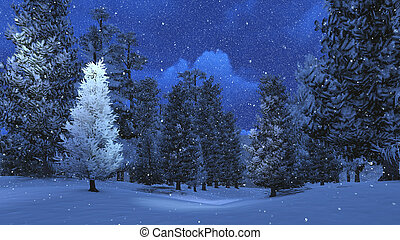 Winter night in the snowbound pinewood 3 - Nighttime view of...