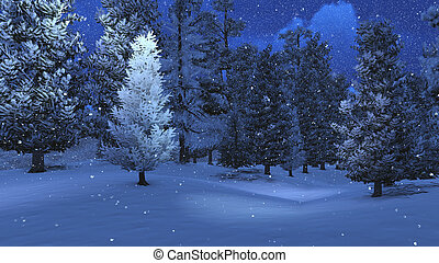 Winter night in the snowbound pinewood 4 - Nighttime view of...