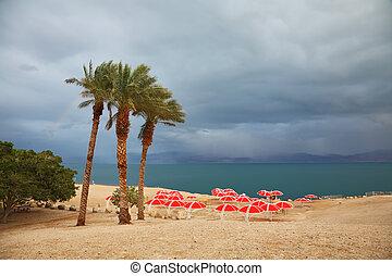 Red umbrellas and purple thunderheads