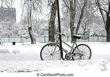 winter, paardrijden