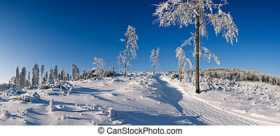 Winter panorama in the hills