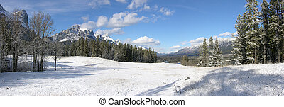 winter panorama - winter landscape