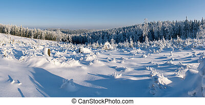 Winter panorama with forest in hills