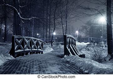 Winter park at night.