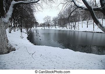 Winter Park duck pond