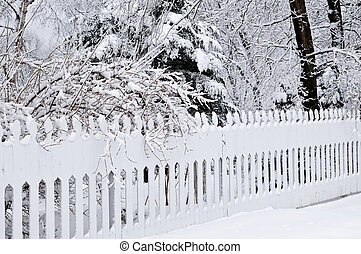 Winter park - Fence in winter park covered with fresh snow
