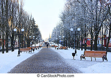winter park in the city
