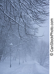 Winter park in the evening covered with snow with a row of lamps and leading pathway. Tree branches on foreground