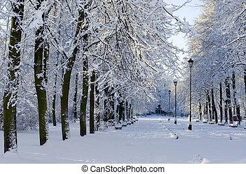 Winter park view