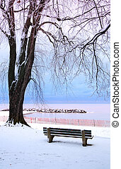 Winter park with a bench covered with snow. Beach area, ...