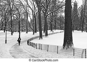 Winter Path Central Park