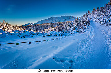 Winter path in the mountains at sunrise