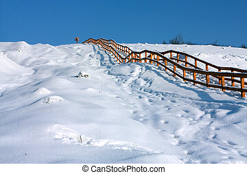 Winter path with wood ladder