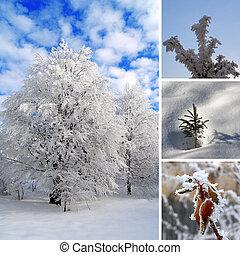 Winter photo collage