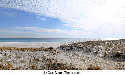 winter., playa, florida, golfo, méxico